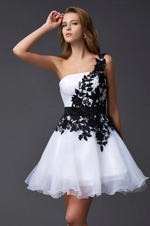 Abito Homecoming Corto in Pizzo Cerniera Principessa in Organza